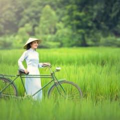 biking Vietnam rice paddy fields