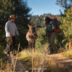 Expediciones Sierra Norte hiking tours