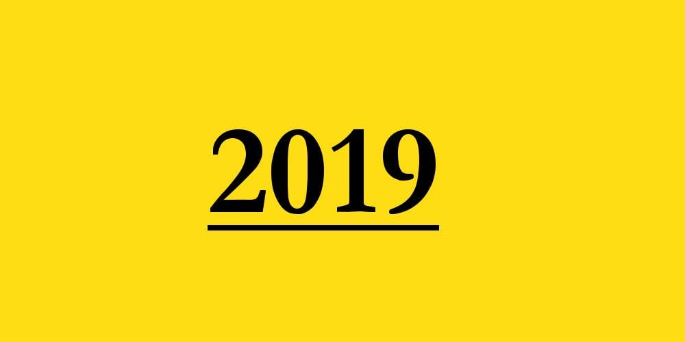 Il 2019 in breve