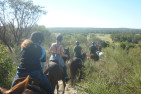 Horse Ride along the Moore River Billabongs