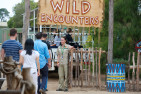 Werribee Zoo - Open Vehicle Adventure - Adult