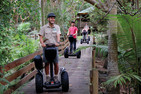 Gold Coast Segway Safari And Currumbin Sanctuary Entry