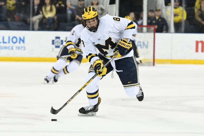 TheWolverine - Michigan Hockey Notebook: Michigan Splits ...