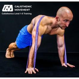 Calisthenic Movement Training Level 1-5