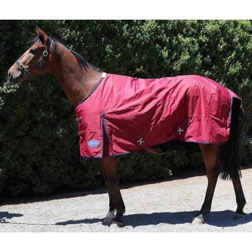 Barnsby 600D Equestrian Waterproof Horse Winter Blanket / Turnout Rug - Standard Neck Plum