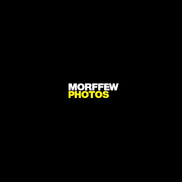 Morffew Photos
