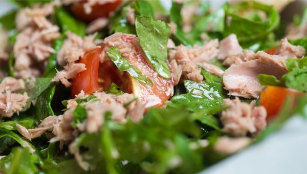 Canned tuna or chicken