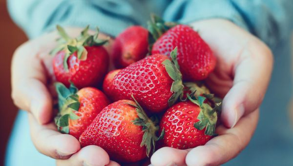Fruit: Strawberries