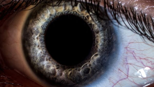 Eyes Can Reveal Neurological Disorders