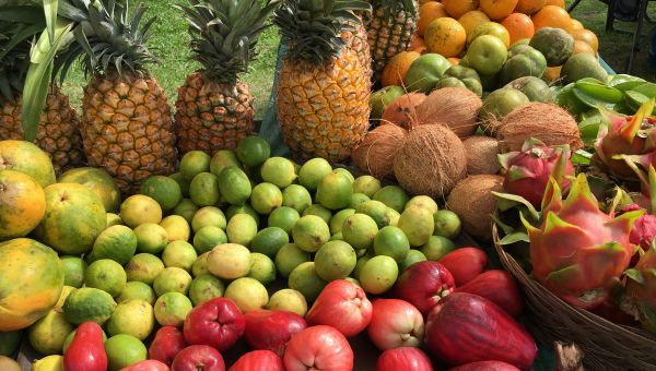 Year-Round Fruits and Vegetables