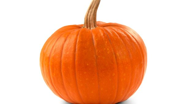 Week 40 – Baby's Size: Small Pumpkin