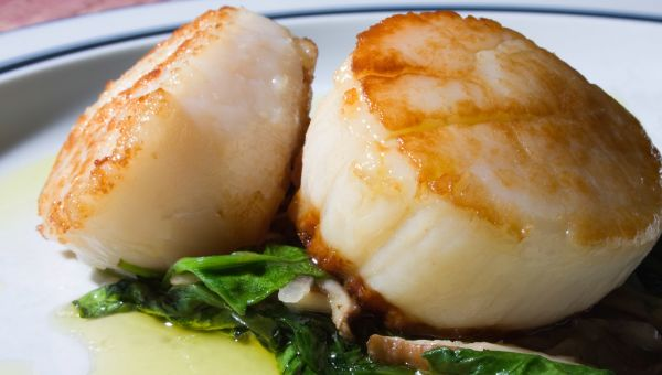 Anti-Inflammatory Recipe: Seared Scallops with Oyster Mushrooms