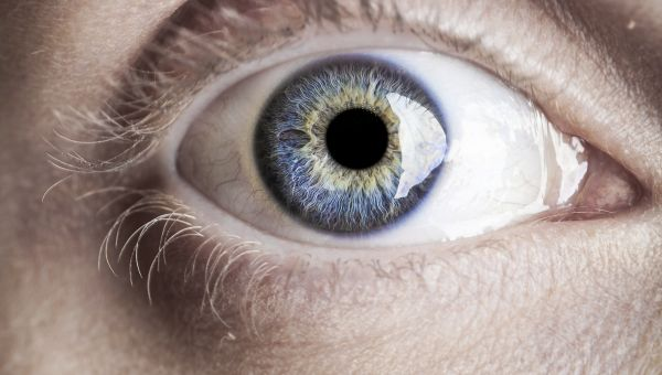 Looking for Stroke Risks in Eyeball Photos