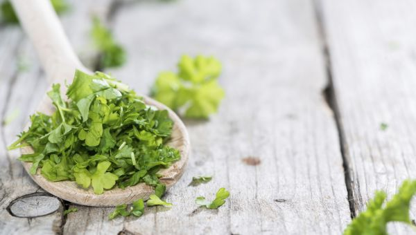 Parsley for a Healthy Prostate
