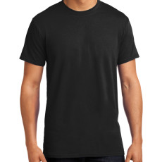 Hanes X-Temp T-Shirt (Apparel)