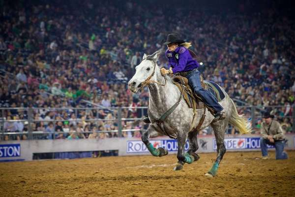 Houston Livestock Show and Rodeo 2016
