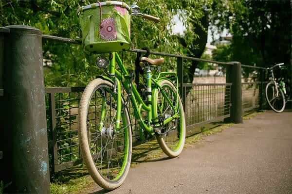 Bikes & Bayous Adventure