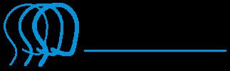 Brain Injury Association of Michigan Logo