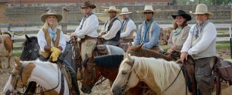 Special Events Horses