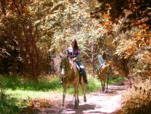 Natural Valley Ranch horseback riding in fall