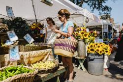 Woman Shops Boulder Farmers Market