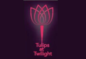 Tulips at Twilight