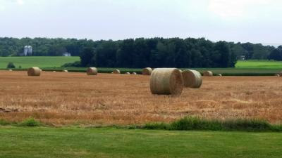 gorham-long-view-farmland