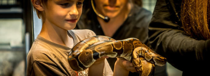 Child petting boa snake at Lake Tobias Wildlife Park in Visit Hershey Harrisburg