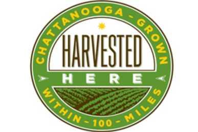 1824_1003_268_988_Harvested-Here-logo.jpg