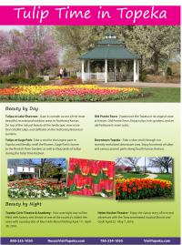 Print a Tulip Time flier