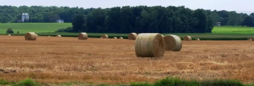 gorham-long-view-farmland
