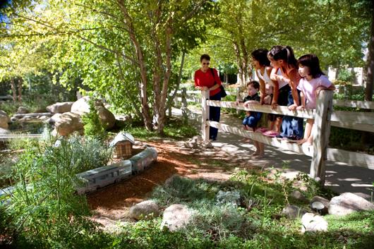 children biopark