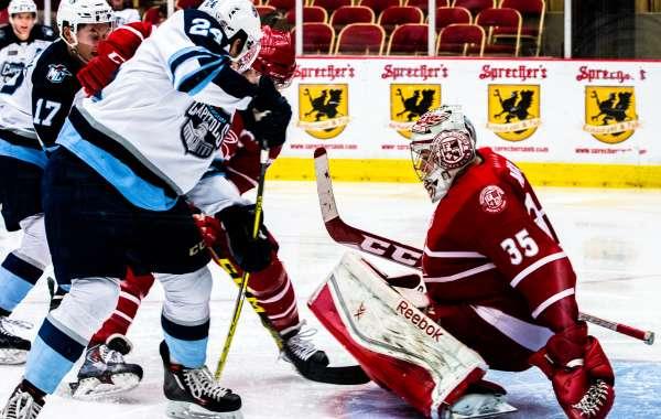 USHL Madison Capitols vs. Dubuque Fighting Saints/ Pucks n' Paws night presented by Animart