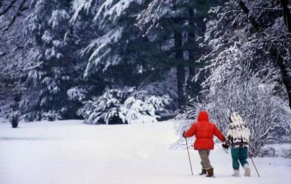 UW-Madison Arboretum Family Nature Program: Who's Hibernating?