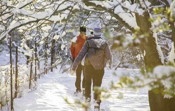 UW-Madison Arboretum Walk: The End of Winter.