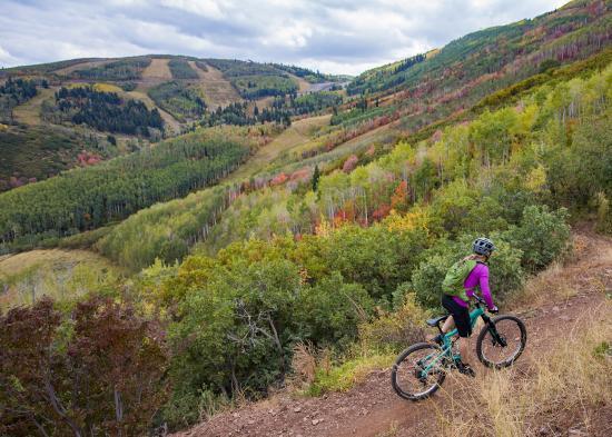 New Years Blog Image - biking