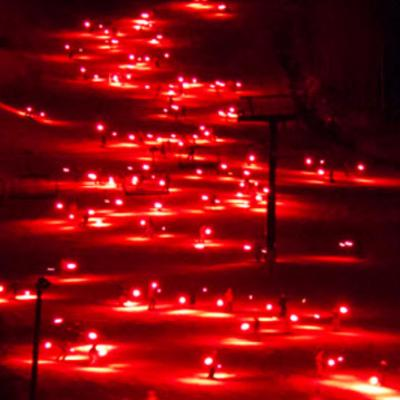Holiday Torchlight Parade