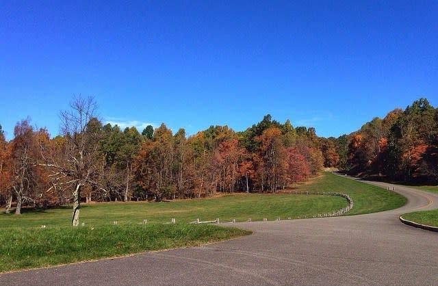 Blue Ridge Parkway View - Fall Photo