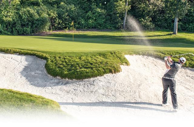 Carmel Valley Golf