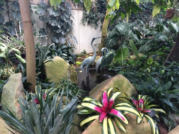 State Botanical Garden of Georgia Tropical Conservatory