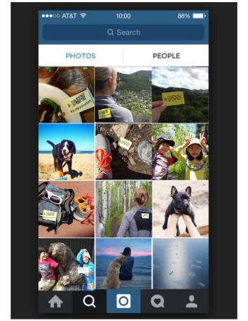 DVMF iPhone Instagram Shot