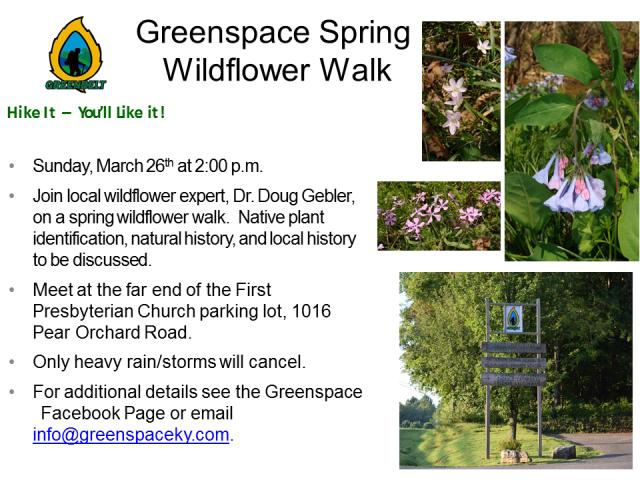 Spring Wildflower Walk