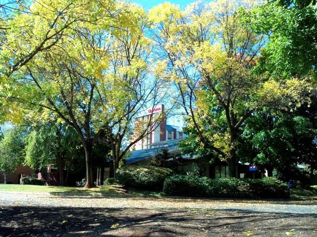 Fall Colors at Sheraton Roanoke - Fall Photo