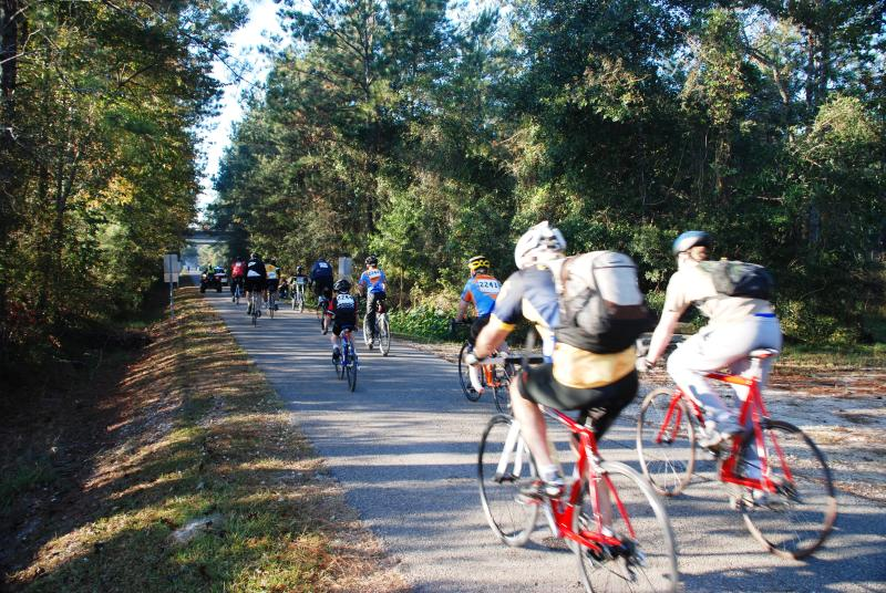 Cycling the Tammany Trace