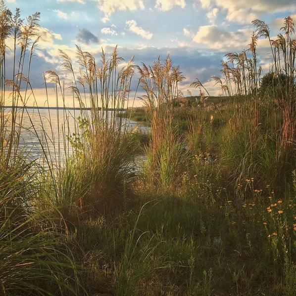 Wilson_Lake_August_Instagram