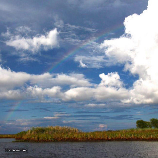 Photo of the Month - Rainbow
