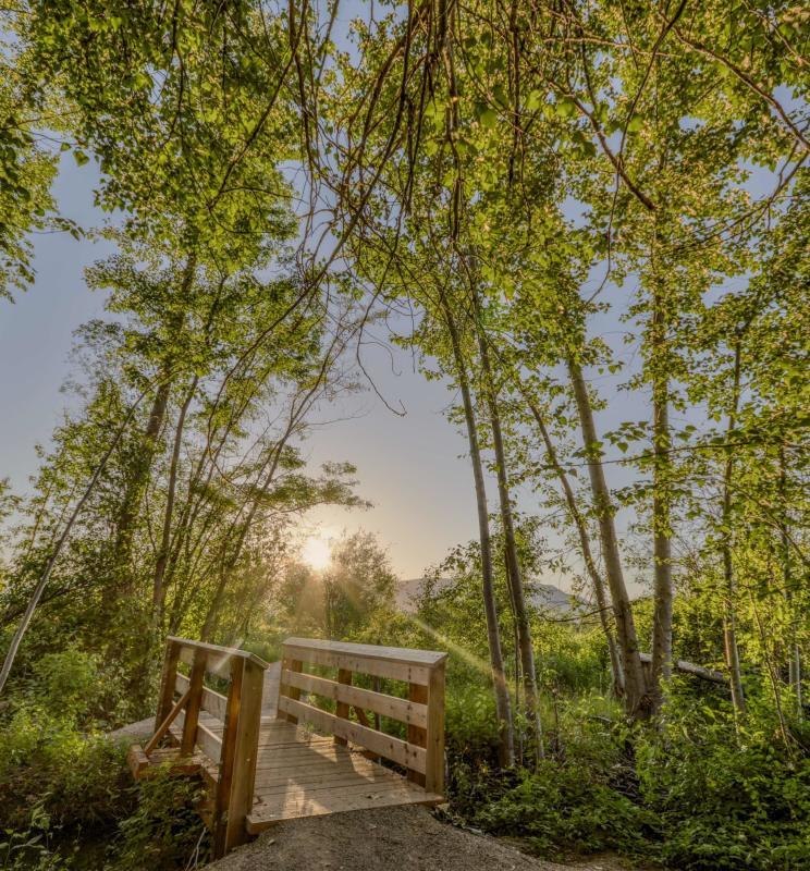Munson Pond | Eoin Carey