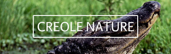 Creole Nature