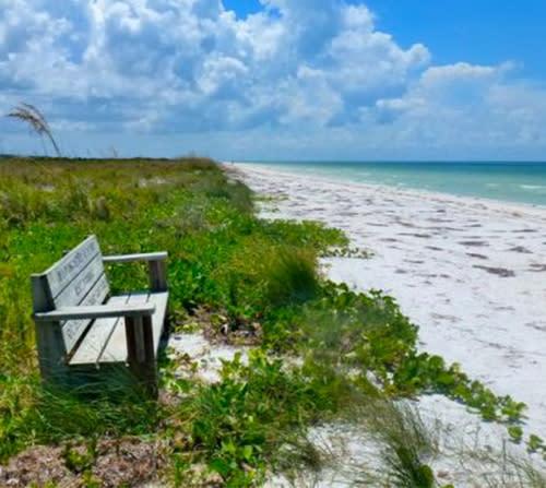 Island Beach State Park: Honeymoon Island State Park