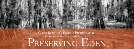 Preserving Eden - Clyde Butcher's Florida Photographs